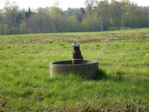 Auf dem Grundstück wurden Grundwassermessstellen eingerichtet um mögliche Grundwasserverunreinigungen festzustellen